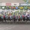 金沢競馬は弱い馬が多いので馬券は他場馬を狙うと儲かる