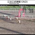 ニコ生で南関東競馬の全レースが放送されとるで!