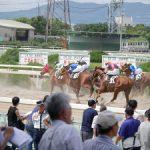 園田競馬予想のコツ