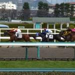 どうして競馬ファンは宝塚記念がファン投票で出走馬が決まるのに当たりやすい馬を選ばないのか?